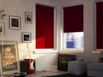 Рулонные шторы «Блэкаут» - фото 4